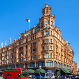 The Dame: Harrods and their little Rae of Sunshine