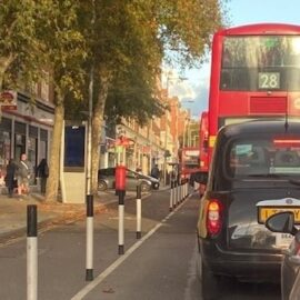 The Dame: TFL AND ITS DODGY AND EXPENSIVE 'RESIDENTS' SURVEY